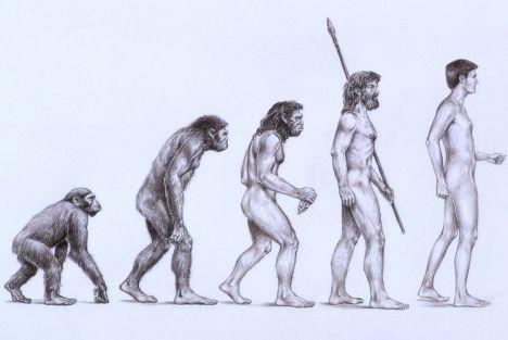 evoluiton