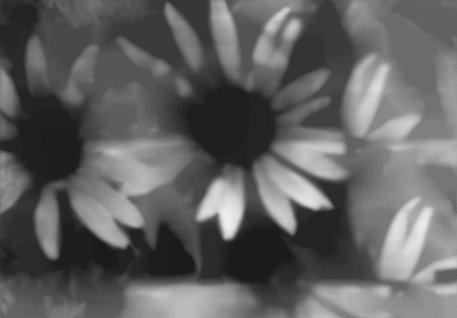 floral c
