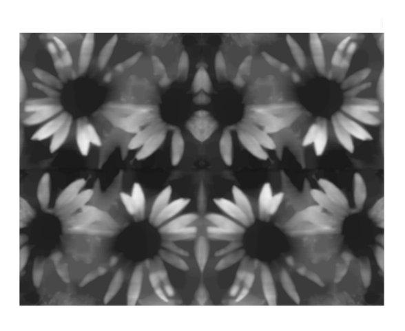 floral d