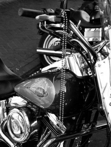 motorbikes6