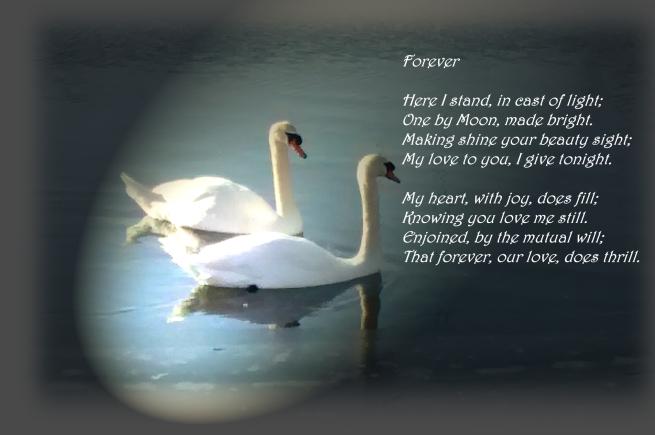 forever poem